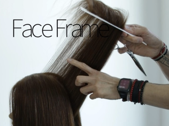 Long Layers  +  Face Frame